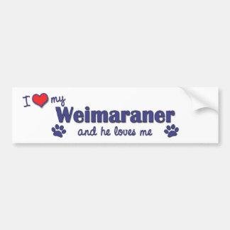 Amo mi Weimaraner (el perro masculino) Pegatina Para Auto