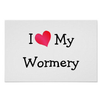 Amo mi Wormery Poster