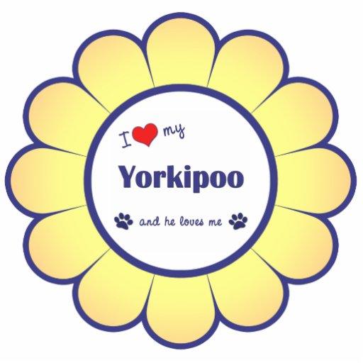 Amo mi Yorkipoo (el perro masculino) Adorno Fotoescultura