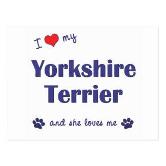 Amo mi Yorkshire Terrier (el perro femenino) Tarjeta Postal