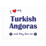 Amo mis angoras turcos (los gatos múltiples) postal