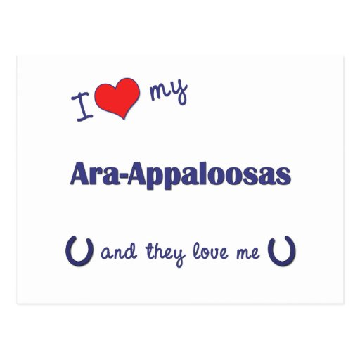 Amo mis Ara-Appaloosas (los caballos múltiples) Postales
