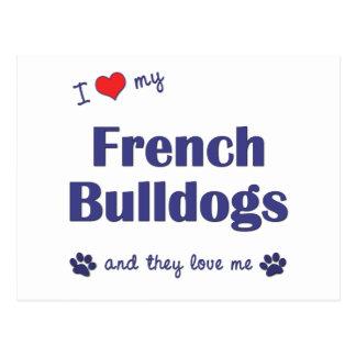 Amo mis dogos franceses (los perros múltiples) postal