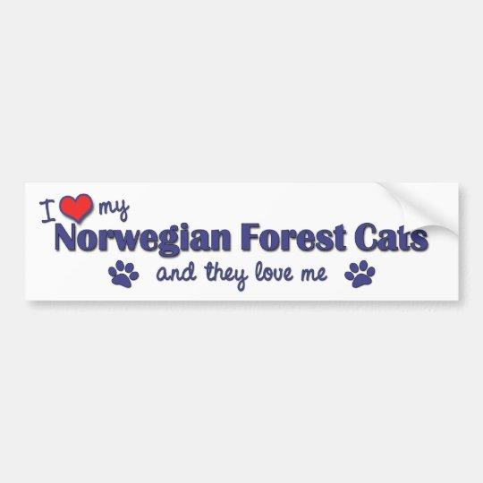 Amo mis gatos noruegos del bosque (los gatos múlti pegatina para auto
