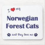 Amo mis gatos noruegos del bosque (los gatos múlti tapetes de raton