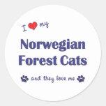 Amo mis gatos noruegos del bosque (los gatos etiquetas redondas