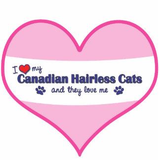 Amo mis gatos sin pelo canadienses los gatos múlt escultura fotografica