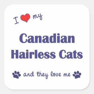 Amo mis gatos sin pelo canadienses (los gatos calcomanía cuadrada