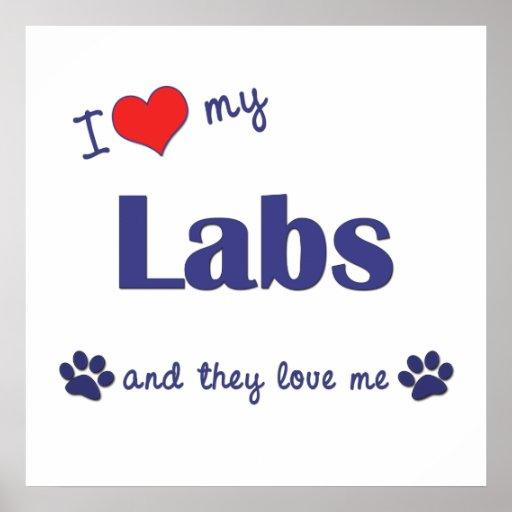 Amo mis laboratorios (los perros múltiples) impresiones