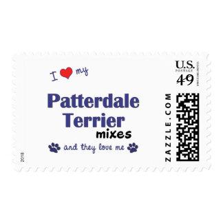 Amo mis mezclas de Patterdale Terrier (los perros Sellos
