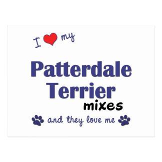 Amo mis mezclas de Patterdale Terrier (los perros Postal