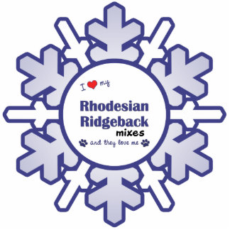 Amo mis mezclas de Rhodesian Ridgeback (los perros Adorno Fotoescultura