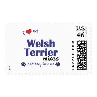 Amo mis mezclas de Terrier galés (los perros múlti