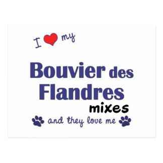 Amo mis mezclas del DES Flandres de Bouvier (los Tarjeta Postal