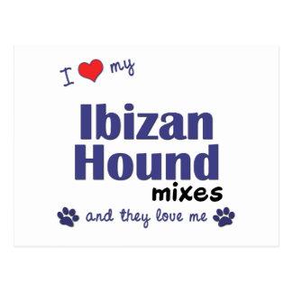 Amo mis mezclas del perro de Ibizan los perros mú Tarjetas Postales