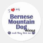 Amo mis mezclas del perro de montaña de Bernese Pegatinas Redondas