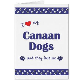 Amo mis perros de Canaan (los perros múltiples) Tarjeta Pequeña