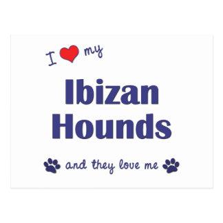 Amo mis perros de Ibizan los perros múltiples Postales
