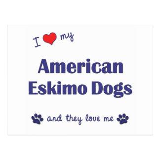 Amo mis perros esquimales americanos (los perros tarjeta postal