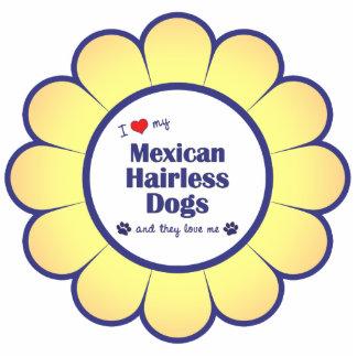 Amo mis perros sin pelo mexicanos (los perros múlt esculturas fotograficas