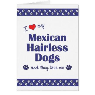 Amo mis perros sin pelo mexicanos (los perros múlt tarjeta pequeña