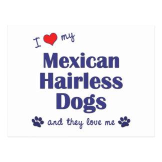 Amo mis perros sin pelo mexicanos (los perros postal