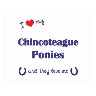 Amo mis potros de Chincoteague (los potros Postal