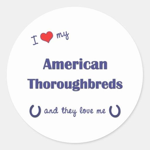Amo mis pura sangre americanos (los caballos pegatina redonda