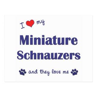 Amo mis Schnauzers miniatura los perros múltiples Postales