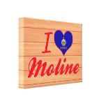 Amo Moline, Kansas Impresión En Lona