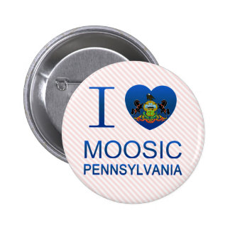 Amo Moosic, PA Pin