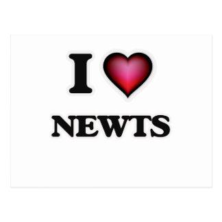 Amo Newts Tarjetas Postales