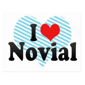 Amo Novial Postales
