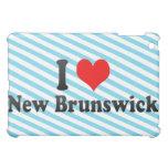 Amo Nuevo Brunswick, Estados Unidos
