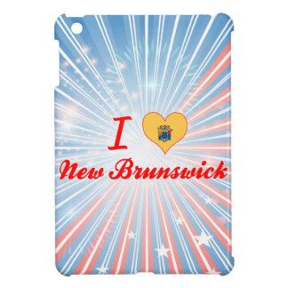 Amo Nuevo Brunswick, New Jersey