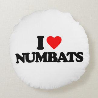 AMO NUMBATS