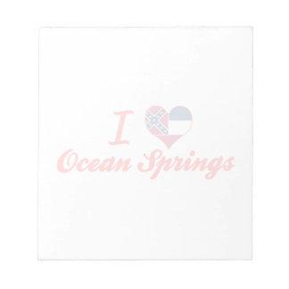 Amo Ocean Springs, Mississippi Blocs