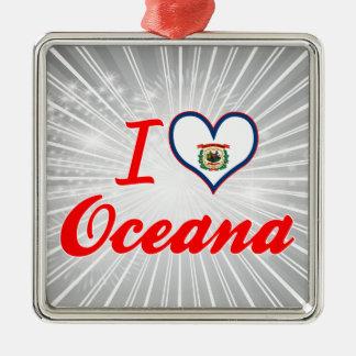 Amo Oceana, Virginia Occidental Adorno Cuadrado Plateado