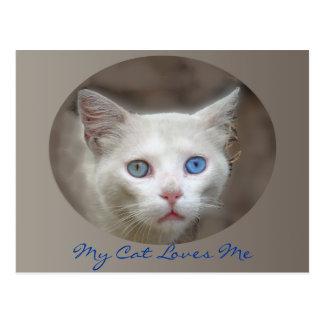 Amo ojos azules tarjeta postal