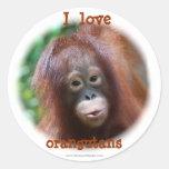Amo orangutanes pegatina redonda