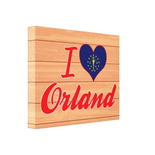 Amo Orland, Indiana Lona Envuelta Para Galerias