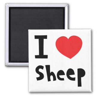 Amo ovejas imán cuadrado