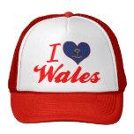 Amo País de Gales, Dakota del Norte Gorros Bordados
