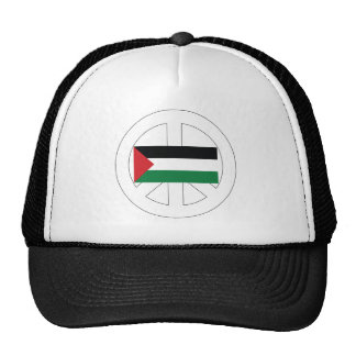 Amo Palestina Gorras