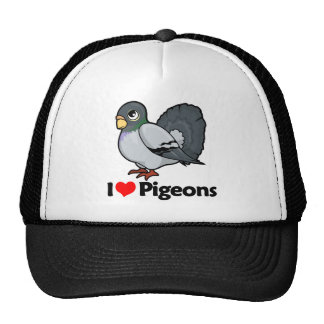 Amo palomas gorros