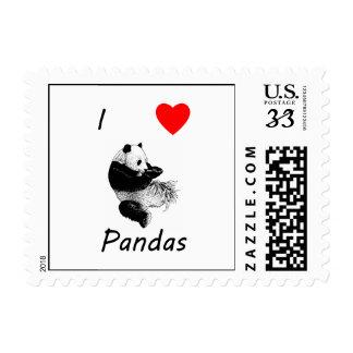 Amo pandas