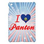 Amo Panton, Vermont