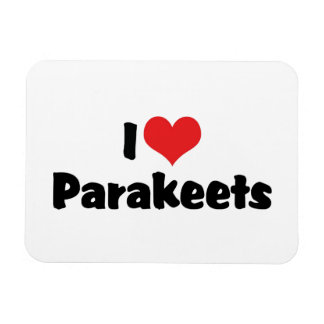 Amo Parakeets Iman Flexible