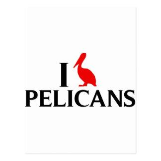 Amo pelícanos postal
