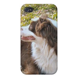 Amo perros iPhone 4 carcasa
